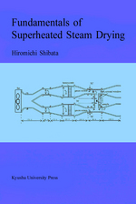 Fundamentals of Superheated Steam Drying